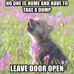Baby Insanity Wolf - no one is home and have to take a dump leave door open