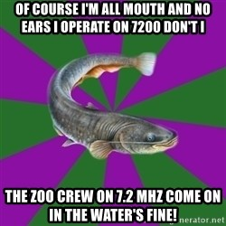 Judgemental Catfish - Of course I'm all mouth and no ears I operate on 7200 don't I The Zoo Crew on 7.2 MHz come on in the water's fine!