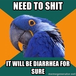 Paranoid Parrot - need to shit it will be diarrhea for sure