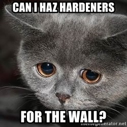 sad cat - can i haz hardeners for the wall?