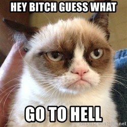 Grumpy Cat 2 - Hey bitch guess what go to hell
