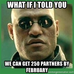 Matrix Morpheus - what if I told you we can get 250 partners by february