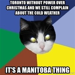 Winnipeg Cat - toronto without power over christmas and we still complain about the cold weather it's a manitoba thing