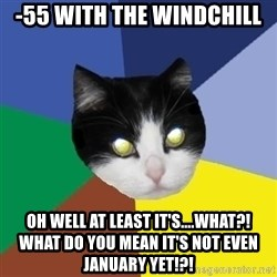 Winnipeg Cat - -55 with the windchill oh well at least it's....what?!  what do you mean it's not even january yet!?!
