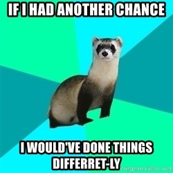 Obvious Question Ferret - If I had another Chance I would've done things differret-ly
