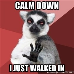 Chill Out Lemur - Calm Down I just walked iN