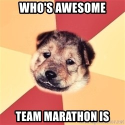 Typical Puppy - who's awesome team marathon is