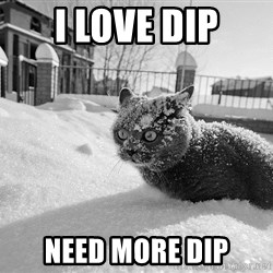 Sudden Clarity Cocaine Cat - I LOVE DIP NEED MORE DIP