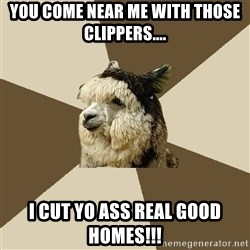 Fyeahknittingalpaca - You come near me with those clippers.... I CUT YO ASS REAL GOOD HOMES!!!