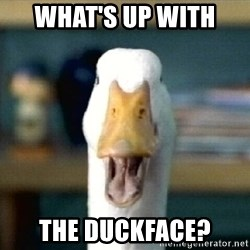 whats up with the duckface aflac duck meme generator,Duck Meme