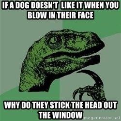 Philosoraptor - if a dog doesn't  like it when you blow in their face why do they stick the head out the window