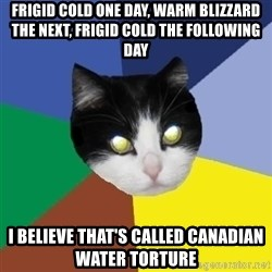 Winnipeg Cat - Frigid cold one day, warm blizzard the next, frigid cold the following day I believe that's called Canadian water torture
