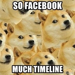so dogeee - So Facebook  Much timeline