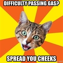 Bad Advice Cat - Difficulty passing gas? Spread you cheeks