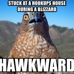 oops hawkward - Stuck at a hookups house during a blizzard