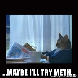 i should buy a boat cat -  ...maybe i'll try meth...