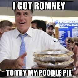 Romney with pies - I got romney to try my poodle pie