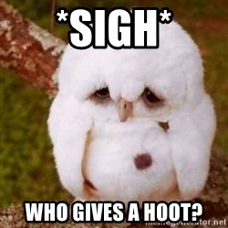 Depressed Owl - *Sigh* Who gives a hoot?