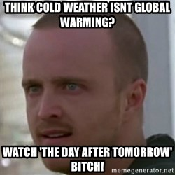 Breaking Bad Jesse Pinkman Bitch! - Think cold weather isnt global warming? Watch 'the day after tomorrow' bitch!