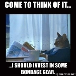 i should buy a boat cat - come to think of it... ...I should invest in some bondage gear.