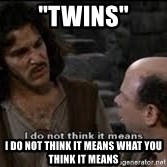 "Grammar Nazi Inigo - ""Twins"" I DO NOT THINK IT MEANS WHAT YOU THINK IT MEANS"
