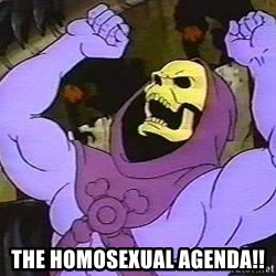 angry skeletor -  The hoMosexual agenda!!