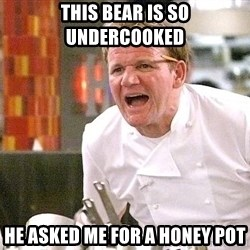 Chef Ramsey - THIS BEAR IS SO UNDERCOOKED HE ASKED ME FOR A HONEY POT
