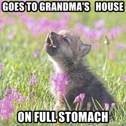 Baby Insanity Wolf - Goes to grandma's   house on full stomach