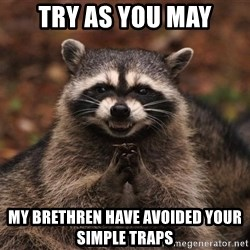 racoon - Try as you may My brethren have avoided your simple traps
