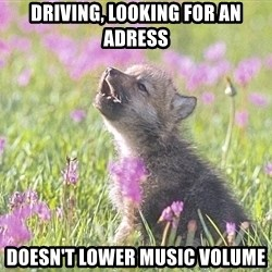 Baby Insanity Wolf - Driving, looking for an adress Doesn't lower music volume