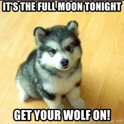 Baby Courage Wolf - It's the full moon tonight get your wolf on!