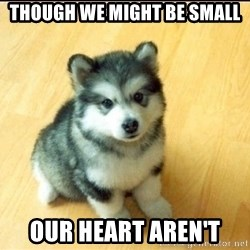 Baby Courage Wolf - though we might be small our heart aren't