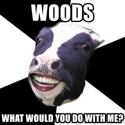 Restaurant Employee Cow - Woods What would you do with me?