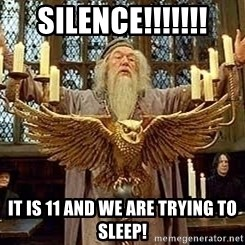 Dumbledore Feast - silence!!!!!!! it is 11 and we are trying to sleep!