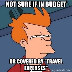 """Futurama Fry - NOT SURE IF IN BUDGET OR COVERED by """"travel expenses"""""""
