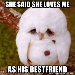 Depressed Owl - She said she loves me as his bestfriend