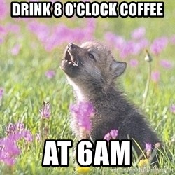 Baby Insanity Wolf - drink 8 o'clock coffee at 6am