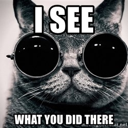 sunglasses cat - I See What you did there