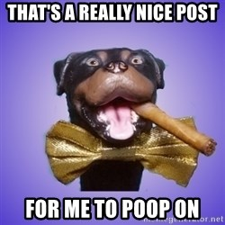 Triumph the Insult Comic Dawg - that's a really nice post for me to poop on