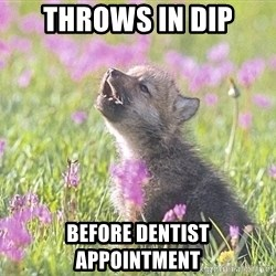 Baby Insanity Wolf - Throws in dip before dentist appointment