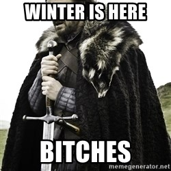 Ned Stark - Winter is here Bitches