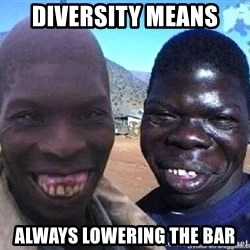 feo3 - diversity means always lowering the bar