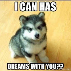 Baby Courage Wolf - i can has dreams with you??