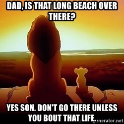 simba mufasa - DAD, IS THAT LONG BEACH OVER THERE? YES SON. DON'T GO THERE UNLESS YOU BOUT THAT LIFE.