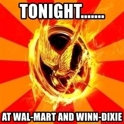 Typical fan of the hunger games - Tonight....... at wal-mart and winn-dixie