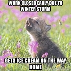 Baby Insanity Wolf - Work closed early due to winter storm Gets ice cream on the way home