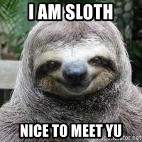 Sexual Sloth - i am sloth nice to meet yu