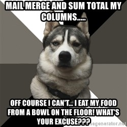 Wise Husky - Mail merge and sum total my columns..... Off course I can't... I eat my food from a bowl on the floor! What's your excuse???