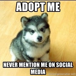Baby Courage Wolf - adopt me never mention me on social media