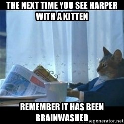 Thinking Cat - the next time you see harper with a kitten remember it has been brainwashed